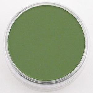 Pan Pastel: Chromium Oxyde Green Shade