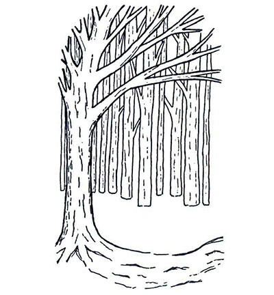 Creative Expressions - Cling Stamp - Backgrond - Tree - UMTREEBACK