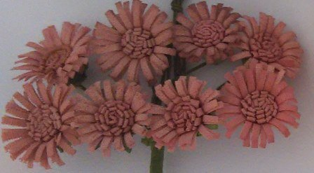 ScrapBerry`s - Paper Flowers - Daises: Cream - SCB281406
