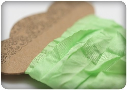 ScrapBerry`s - Shabby Ribbon - Fresh Green - SCB510112