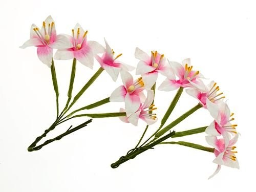ScrapBerry`s - Paper Flowers - Stemmed Lily: White & Pink - SCB290403