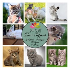 Dixi Craft - Paperpack - Kittens color - ET0239