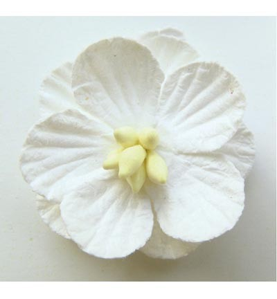 Marianne Design - Paper flowers: White - RB2233