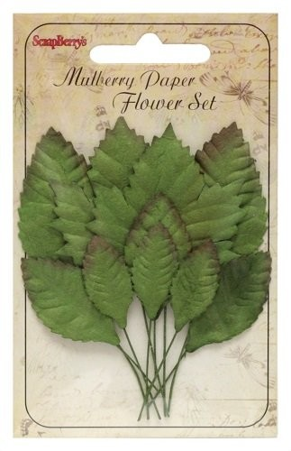 ScrapBerry`s - Set of Leaves - Mixed - SCB300608