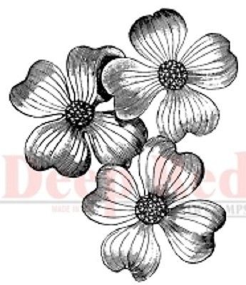 Deep Red - Cling Stamp - Dogwood Flowers - 3X404239