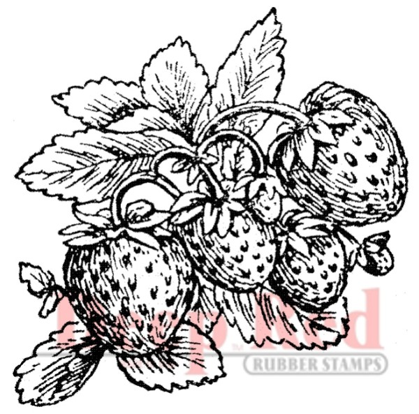Deep Red - Cling Stamp - Strawberries - 3X400121