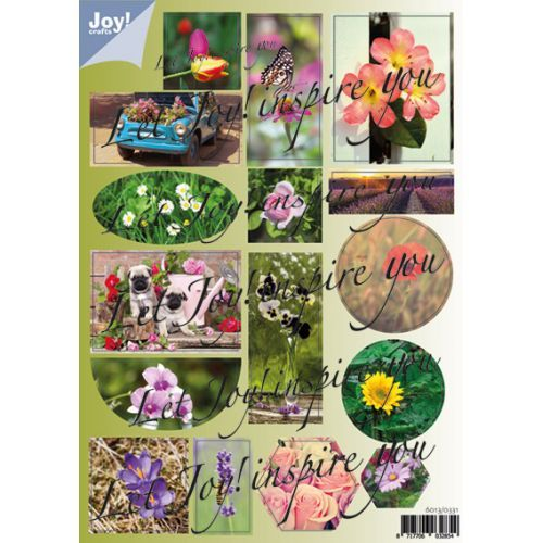 Joy! crafts - (3D-)stansvel A4 - Bloemen - 6013/0331