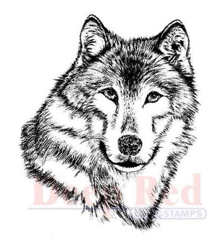 Deep Red - Cling Stamp - Wolf Portrait - 3X405117
