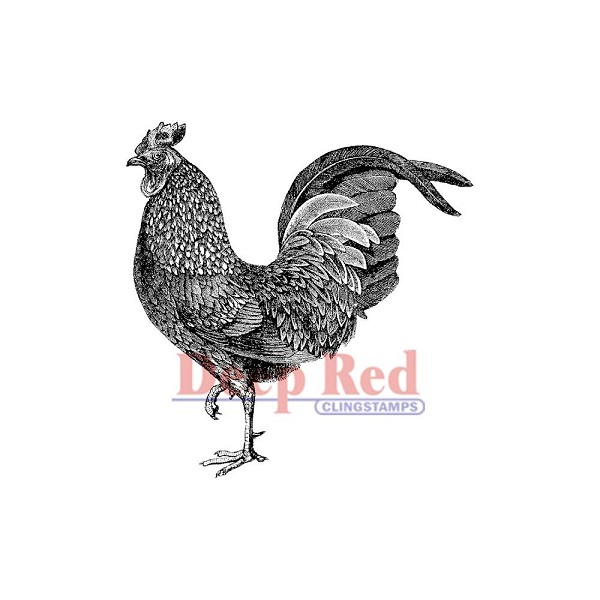 Deep Red - Cling Stamp - Rooster - 3X405127