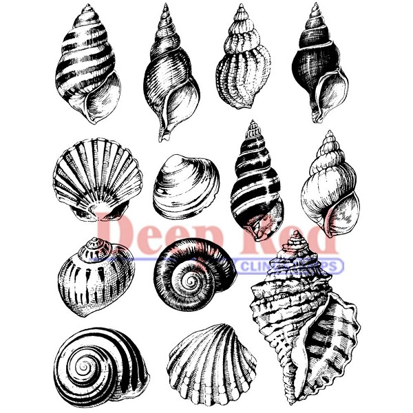 Deep Red - Cling Stamp - Seashell Collection - 4X605150