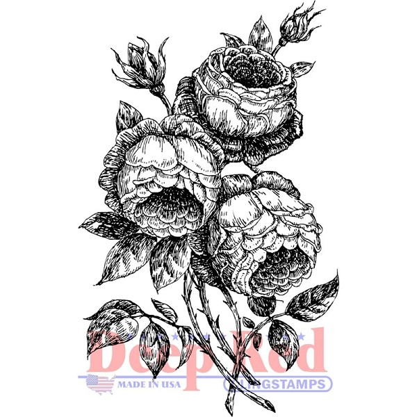 Deep Red - Cling Stamp - English Roses - 3X505615