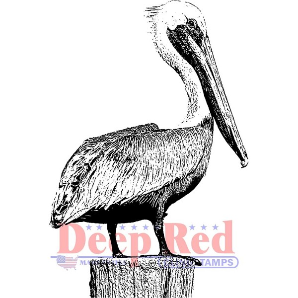 Deep Red - Cling Stamp - Pelican - 3X505619