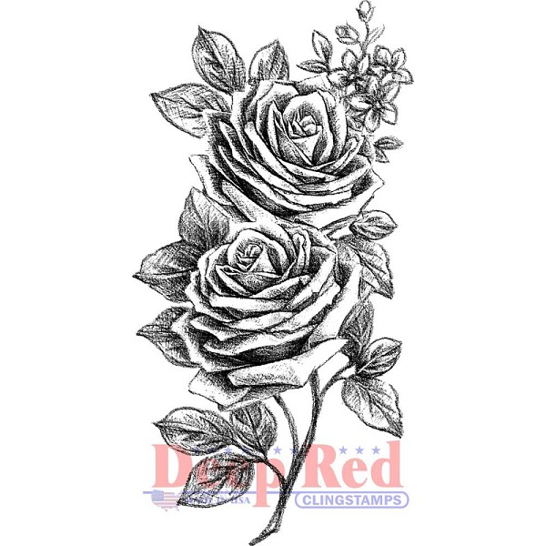 Deep Red - Cling Stamp - Rose Sketch - 4X505627