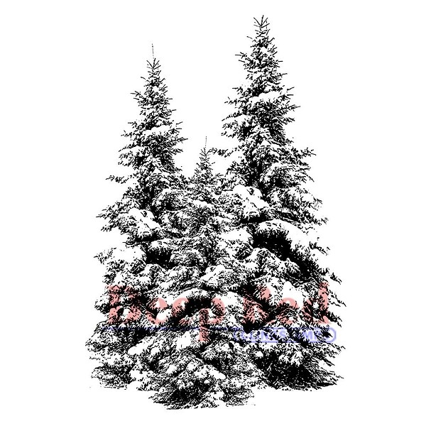 Deep Red - Cling Stamp - Winter Pines - 3X505165