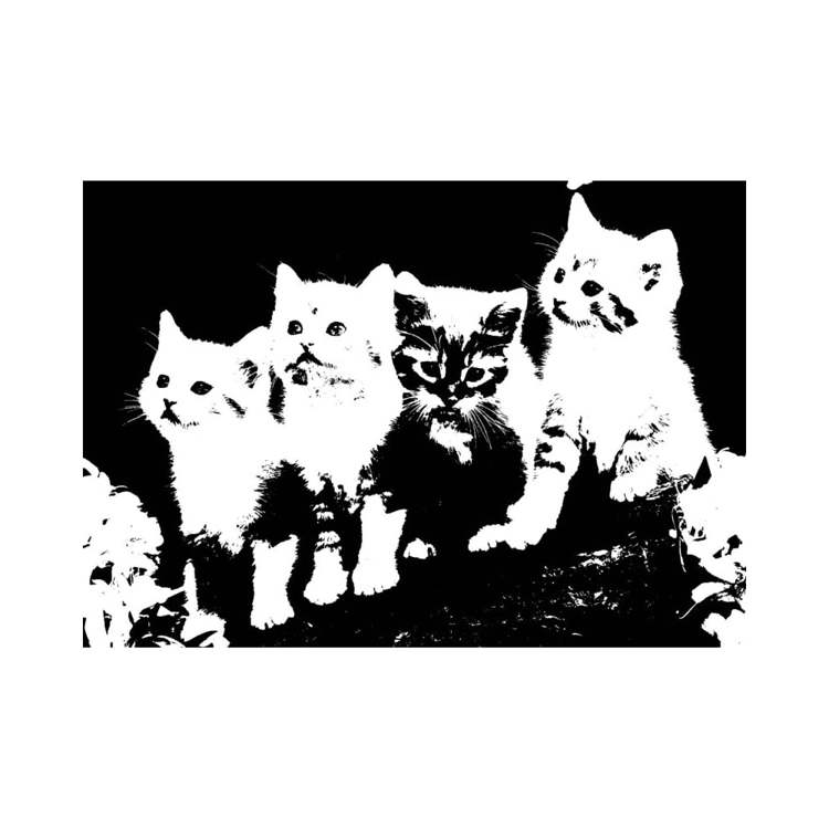 Imagination crafts - Clearstamps - Cats - IC-ST-CATS