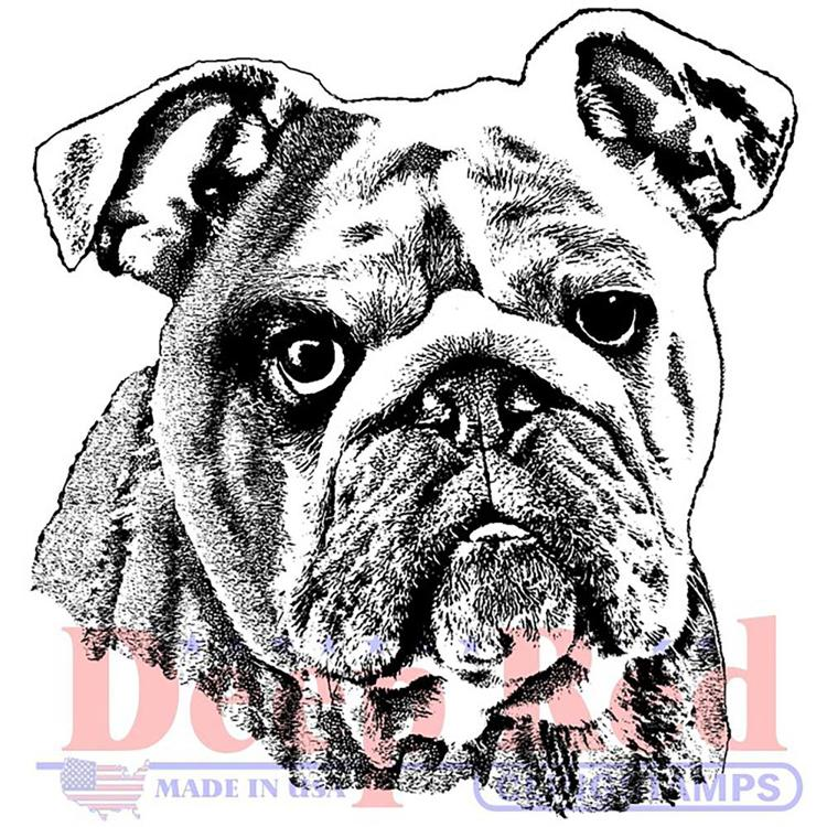Deep Red - Cling Stamp - Bulldog Portrait - 3X405706