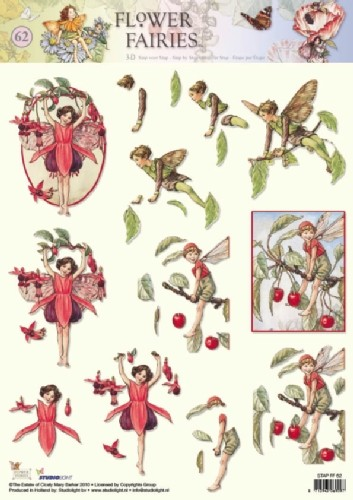 Studio Light - 3D-knipvel A4 - Flower fairies - STAPFF62