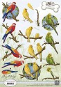 Card Deco - Amy Design - 3D-knipvel A4 - Animal Medley - Tropical Parrots
