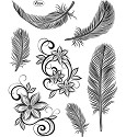Viva Decor - Clearstamp - Feathers