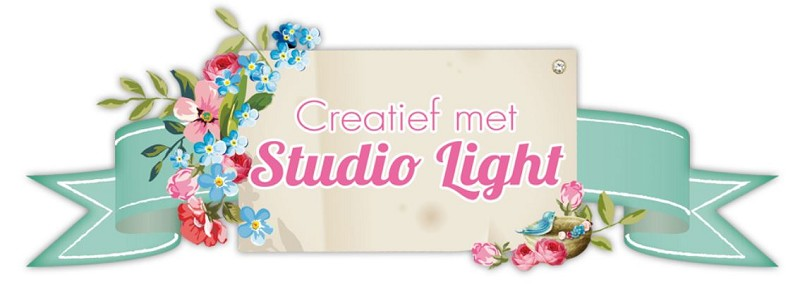 Studio-Light - Groot