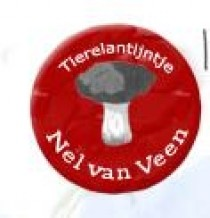 Nel-van-Veen-Tierelantijntje - Groot